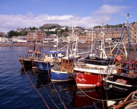 fishing_boats_in_oban_bay_280x224.jpg